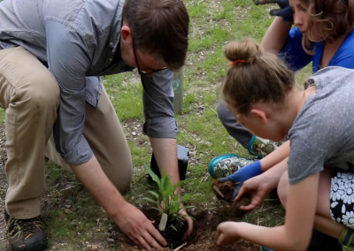 Utilizing Partnerships and Green Infrastructure to Restore Kids Creek at Greenspire Middle School in Traverse City, Michigan